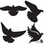 وکتور کبوتر